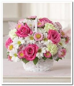 Композиция в корзинке роза одиночная розовая, гвоздика, хризантема ромашковая, зелень