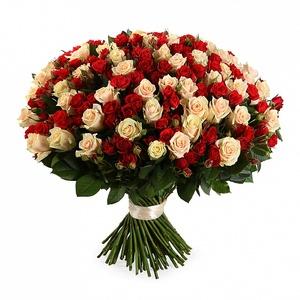 Микс роза кустовая+одиночная 101шт